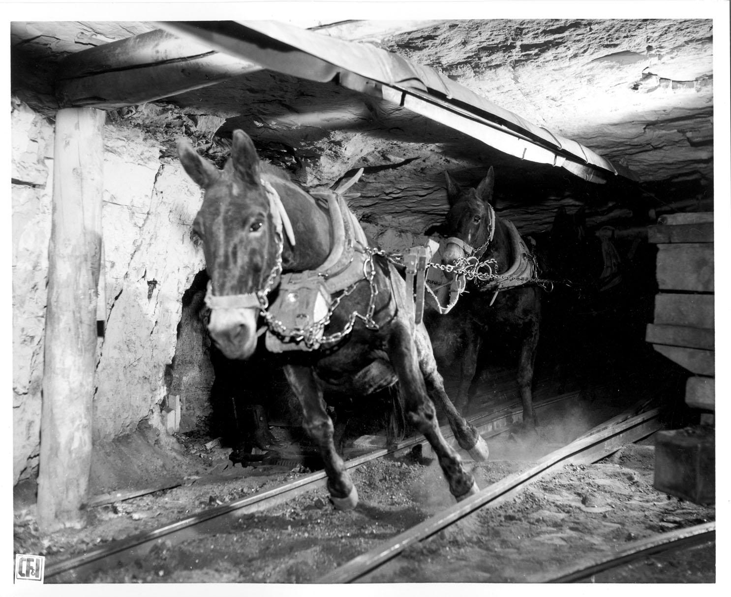 Morley Mine
